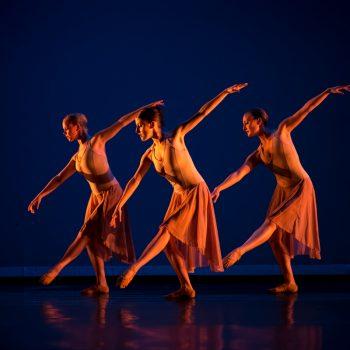 Dance Performance Opportunities